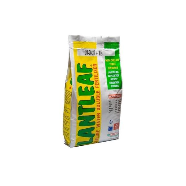 Ingrasamant Plantleaf 5-15-45 + TE - Coacere